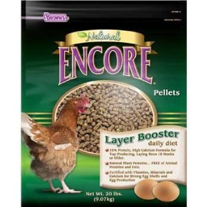 Chicken Feed – Chickens Like Variety Too!
